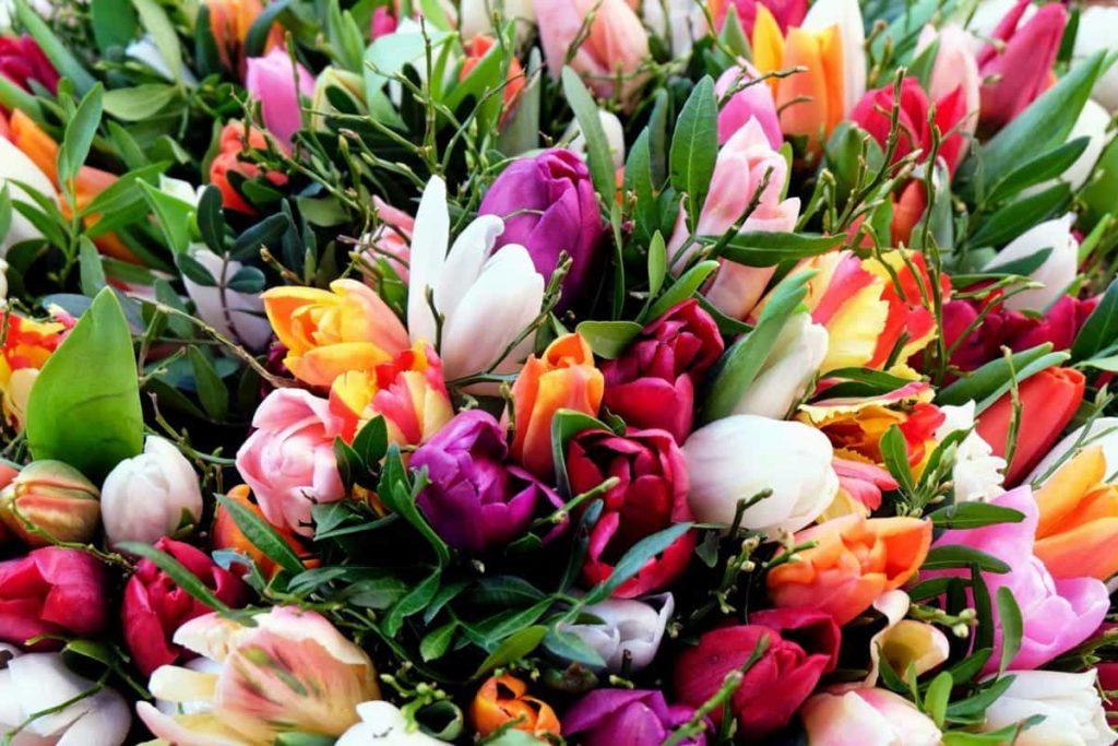 Поздравляем Вас с праздником весны, красоты и любви — с 8-м Марта!